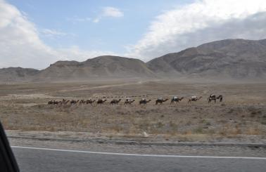 Reopening the Silk Road | IRU