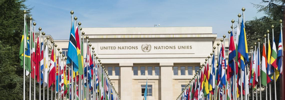 IRU представляет ООН отраслевой подход к декарбонизации