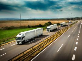 How road freight transport can help achieve climate goals